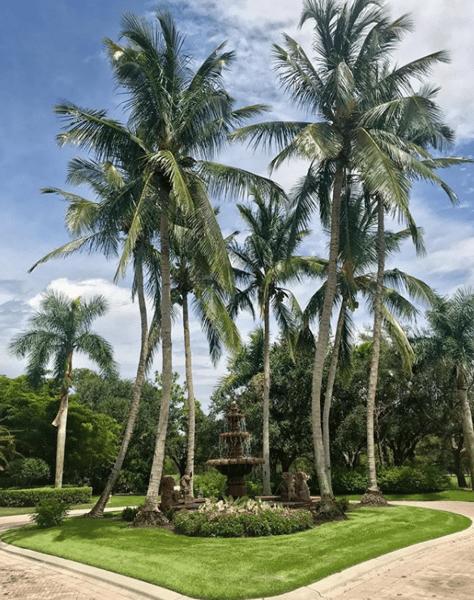 DTE Landscape- Florida